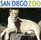San-Diego-Zoo-Tour